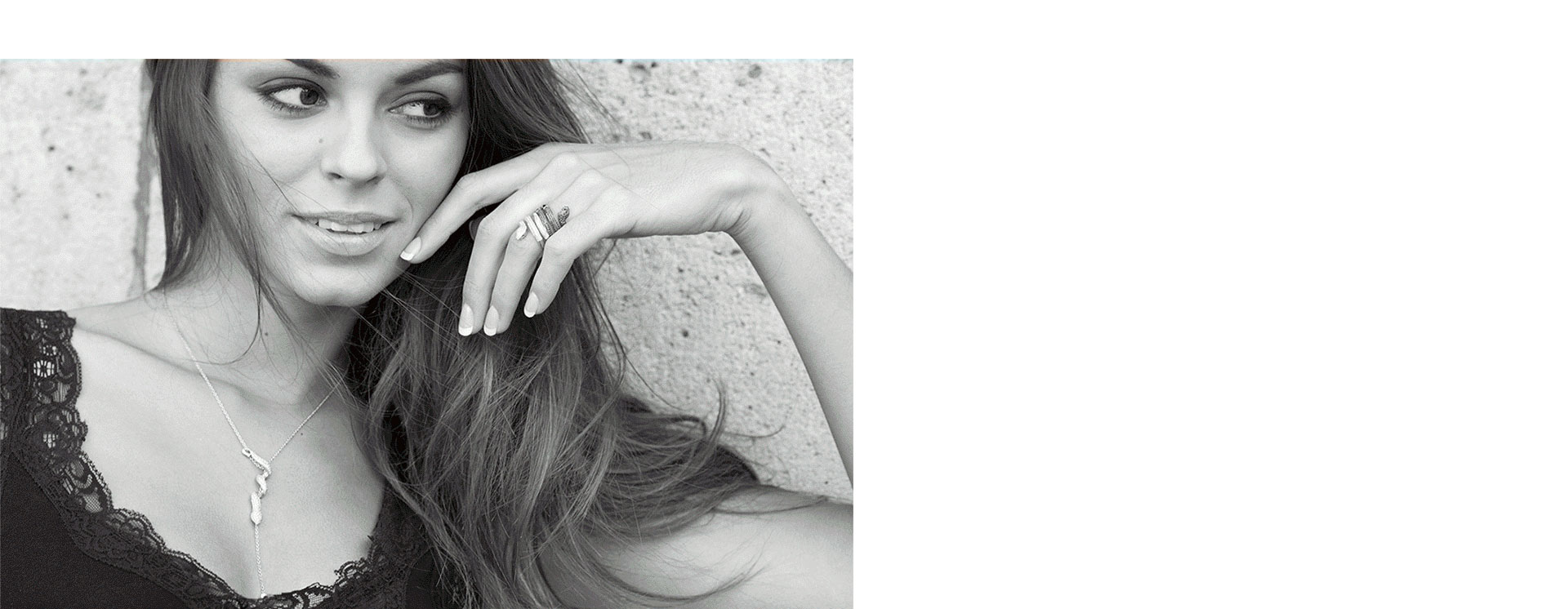 HP-background-blog